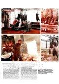 Do prado ao prato - CNA - Page 3