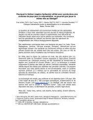 espèce herbacée - The Vetiver Network International