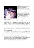Erich Neugebauer. Ing. Martin Petránek - Atlas Copco - FAST - Page 3