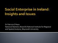 Social enterprise in Ireland: Insights and issues - Pobal