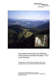 Die aktuelle Verbreitung der Wildkatze (Felis silvestris silvestris ...