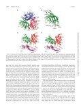 Identification of CD46 Binding Sites within the Adenovirus Serotype ... - Page 6
