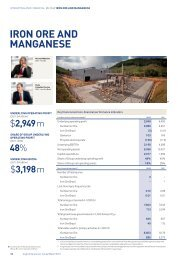 Annual report business units PDF - Anglo American