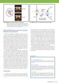 01 NIRVANA: nicter Real-network Visual Analyzer 05 Single-celled ... - Page 7