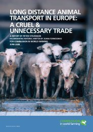 long distance animal transport in europe - Compassion in World ...