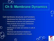 Ch 5: Membrane Dynamics
