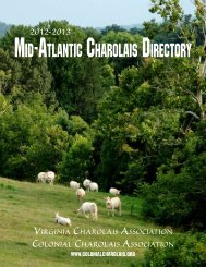 Mid-AtlAntic chArolAis directory - American International Charolais ...