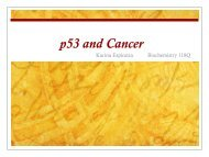 p53 and Cancer - Biochemistry 118