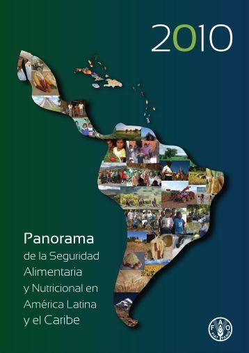 Panorama de la Seguridad Alimentaria y Nutricional en América ...