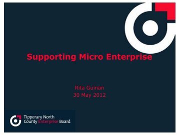 Rita Guinan Chief Executive Officer - Tipperary