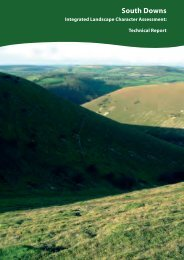 South Downs Integrated Landscape Character Assessment