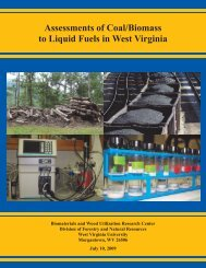 Assessments of Coal/Biomass to Liquid Fuels in West Virginia