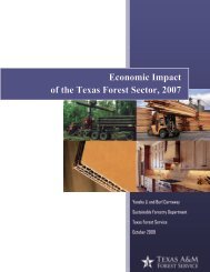2007 full report - Timberland Decision Support System