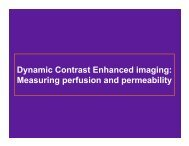 Dynamic Contrast Enhanced imaging: Measuring perfusion and ...