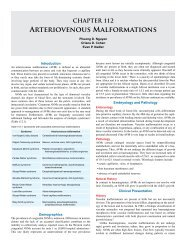 112. Arteriovenous Malformations - Global HELP