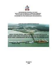 Risco tecnológico: uma análise do porto de Vila do Conde como área