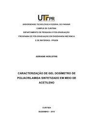 HOELDTKE, Adriana.pdf - PPGEM - UTFPR