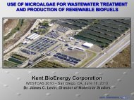 Use of Microalgae for Wastewater Treatment and ... - WESTCAS