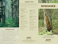 Diseases of the Forests - Minnesota Forest Industries