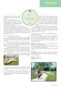 rAntGroen 31 : juli - Zuidrand - Page 5