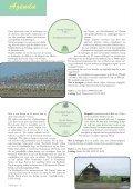 rAntGroen 31 : juli - Zuidrand - Page 6