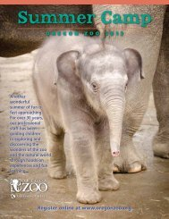Summer Camp 2013 brochure - Oregon Zoo