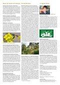 Altlasten: Voruntersuchung schützt vor bösem Erwachen - Page 4