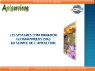 Présentation Système d'Information Géographique ... - Apiservices