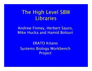 The High Level SBW Libraries