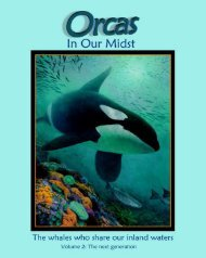 Orcas In Our Midst - Orca Network