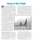 Orcas In Our Midst - Orca Network - Page 5
