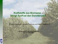 Kraftstoffe aus Biomasse – bringt SunFuel den Durchbruch? - ATB
