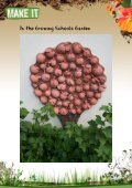 Apple Tree Ceramic Reliefs - The Growing Schools Garden - Page 6