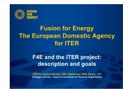 Fusion for Energy The European Domestic Agency ... - Iter Industry