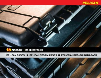 | CASE CATALOG - Safe Air Systems