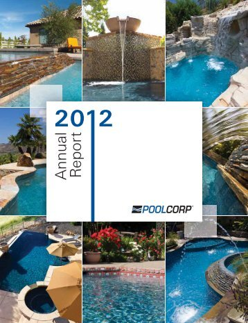 Annual Report - PrecisionIR