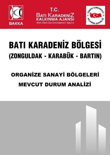 Bakka TR81 OSB Raporu - Batı Karadeniz Kalkınma Ajansı