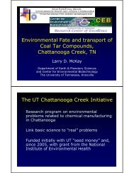 Environmental Fate and transport of Coal Tar Compounds ...