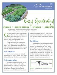 Spinach and Other Greens - Aggie Horticulture - Texas A&M University