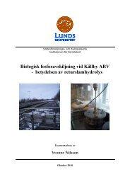 Biologisk fosforavskiljning vid Källby avloppsreningsverk