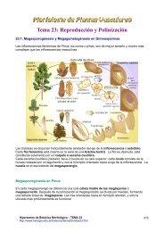 Tema 23: Reproducción y Polinización