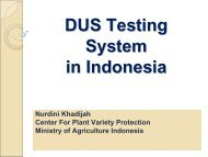 DUS Testing System in Indonesia (PDF/1.77MB)