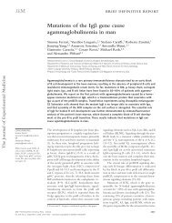 Mutations of the Ig gene cause ... - BioMedSearch