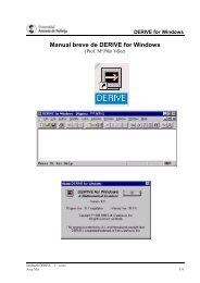 Manual breve de DERIVE for Windows