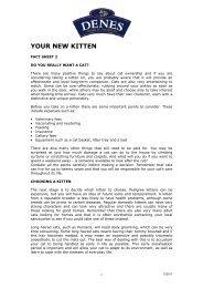 YOUR NEW KITTEN - Denes Natural Pet Care