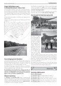 Ausgabe :Gomaringen 15.09.12.pdf - Gomaringer Verlag - Page 5