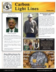 Newsletter 3 - Carbon Power and Light, Inc.