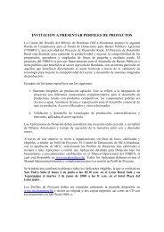 invitacion a presentar perfiles de proyectos - Cuenta del Milenio ...