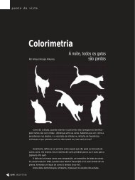 Colorimetria - Lume Arquitetura