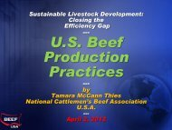 Beef sector perspectives